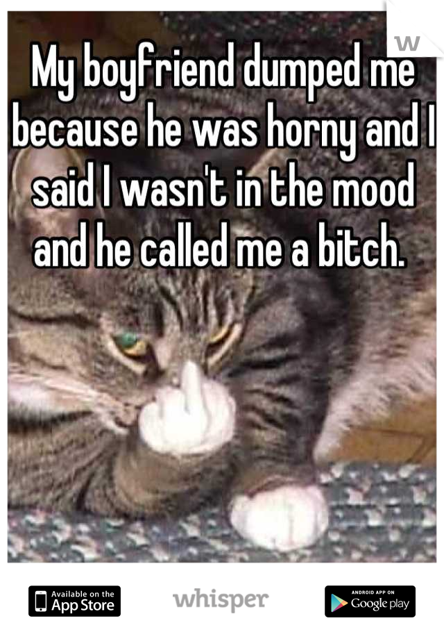 My boyfriend dumped me because he was horny and I said I wasn't in the mood and he called me a bitch.