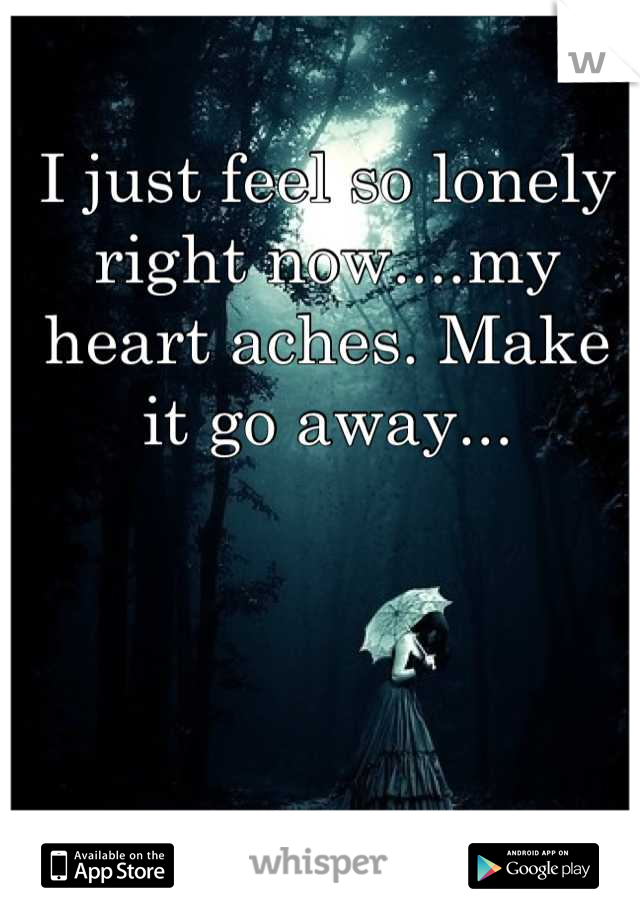 I just feel so lonely right now....my heart aches. Make it go away...
