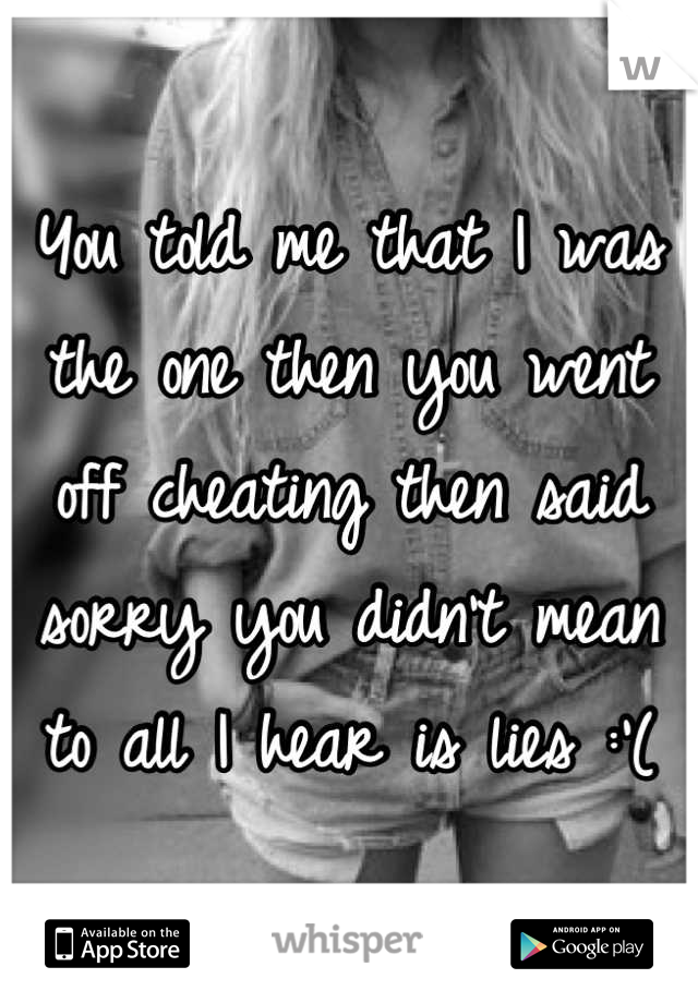 You told me that I was the one then you went off cheating then said sorry you didn't mean to all I hear is lies :'(