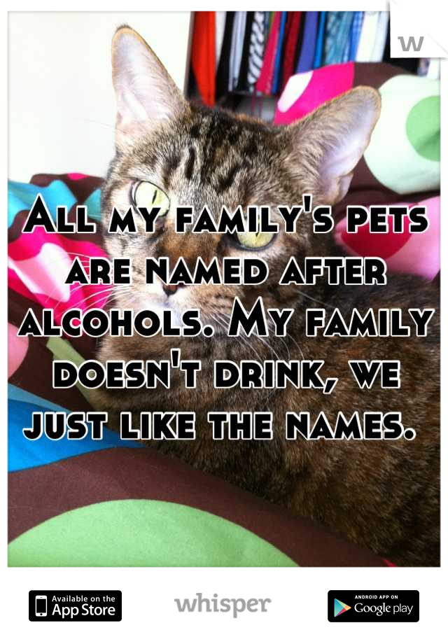 All my family's pets are named after alcohols. My family doesn't drink, we just like the names.