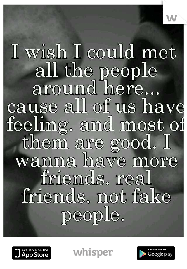 I wish I could met all the people around here... cause all of us have feeling. and most of them are good. I wanna have more friends. real friends. not fake people.