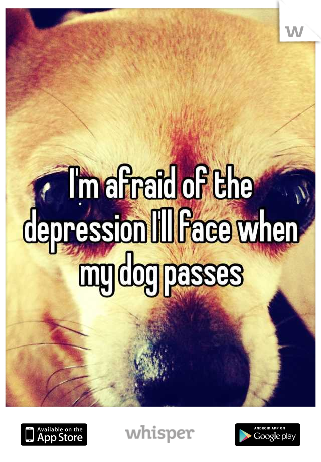 I'm afraid of the depression I'll face when my dog passes