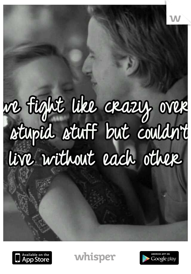 we fight like crazy over stupid stuff but couldn't live without each other