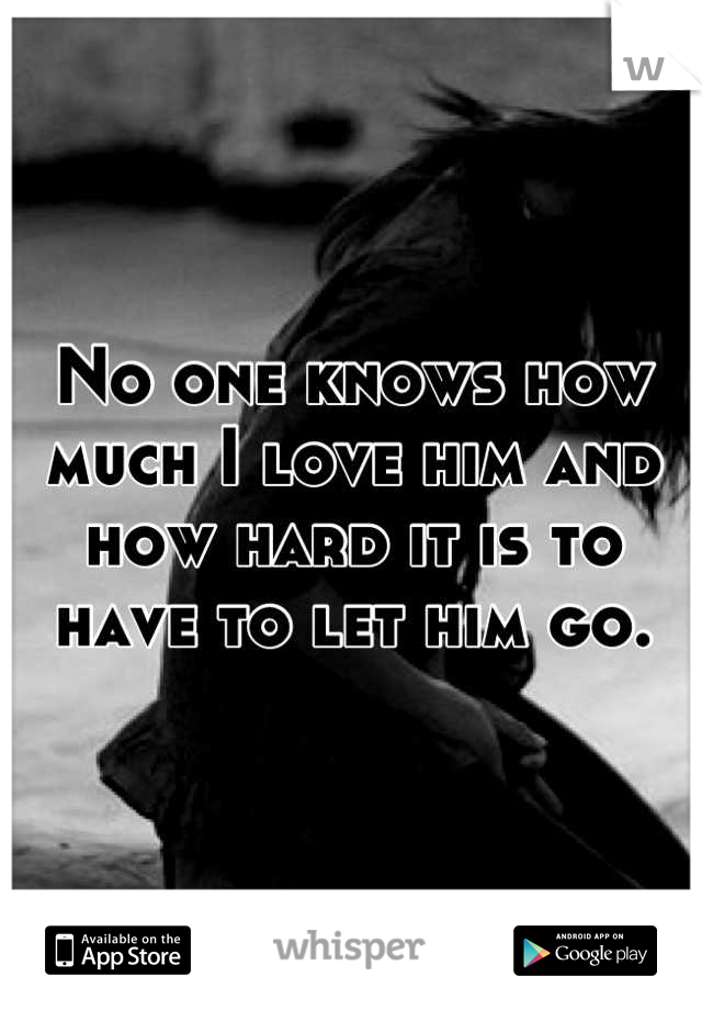 No one knows how much I love him and how hard it is to have to let him go.