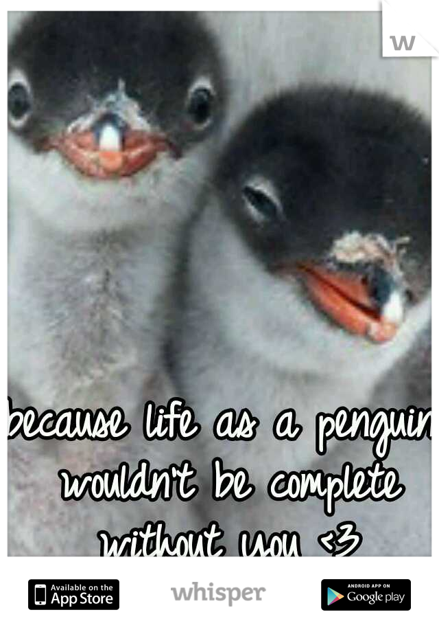 because life as a penguin wouldn't be complete without you <3