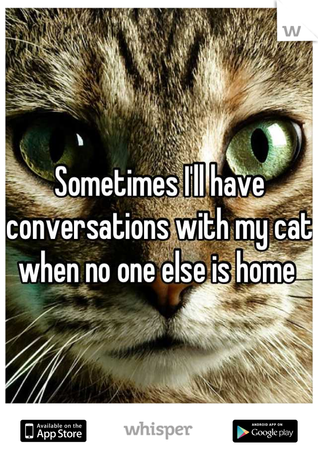 Sometimes I'll have conversations with my cat when no one else is home