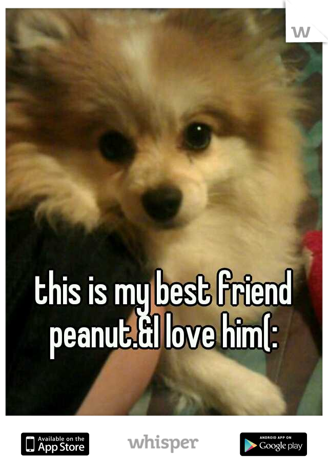 this is my best friend peanut.&I love him(:
