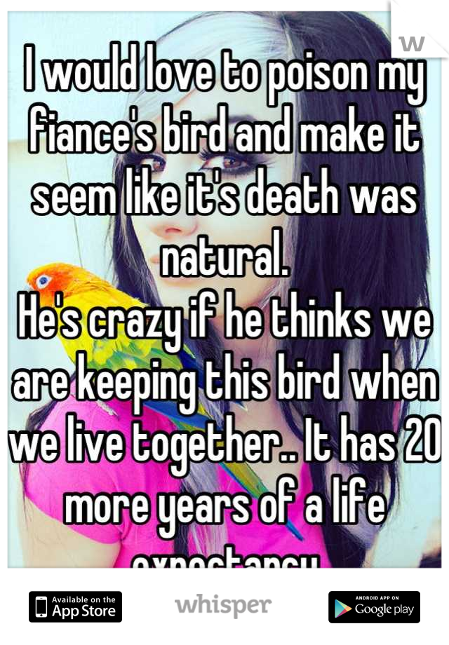 I would love to poison my fiance's bird and make it seem like it's death was natural. He's crazy if he thinks we are keeping this bird when we live together.. It has 20 more years of a life expectancy