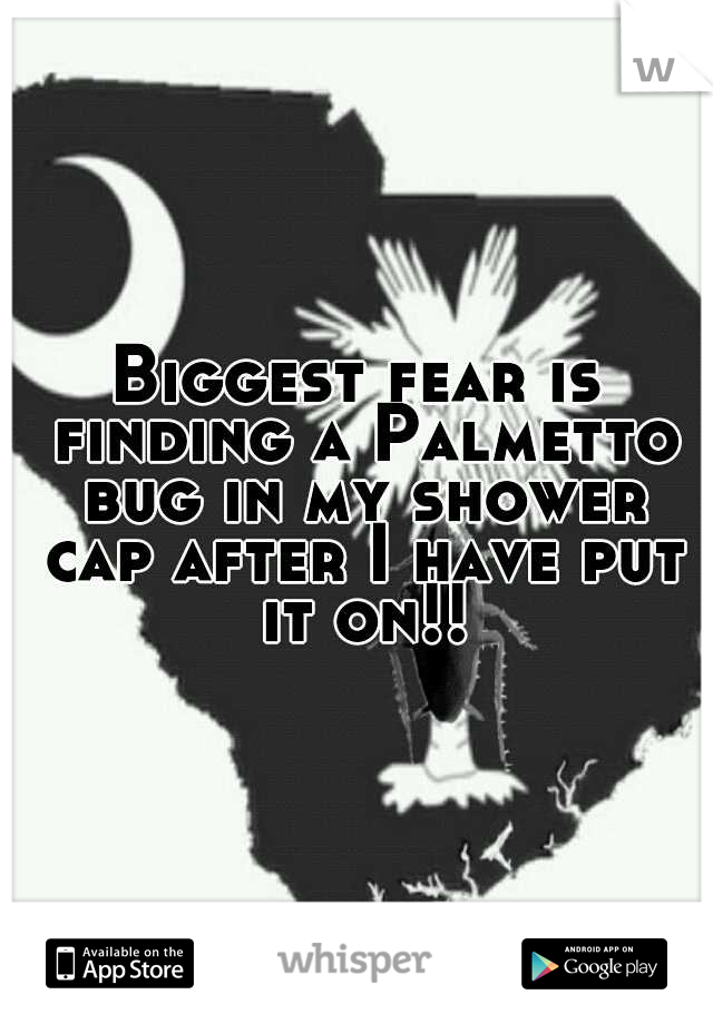 Biggest fear is finding a Palmetto bug in my shower cap after I have put it on!!