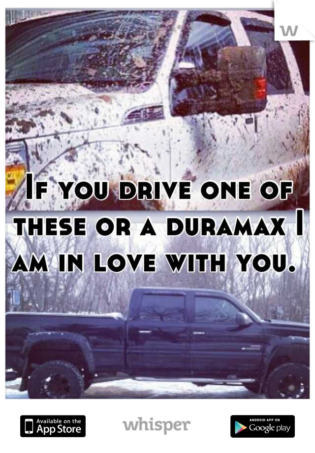 If you drive one of these or a duramax I am in love with you.