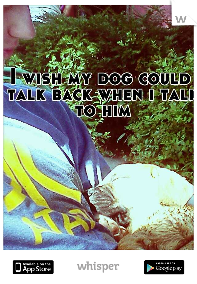 I wish my dog could talk back when i talk to him