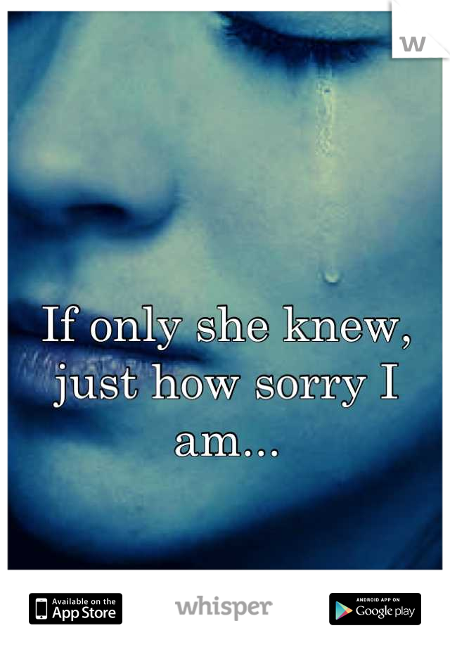 If only she knew, just how sorry I am...