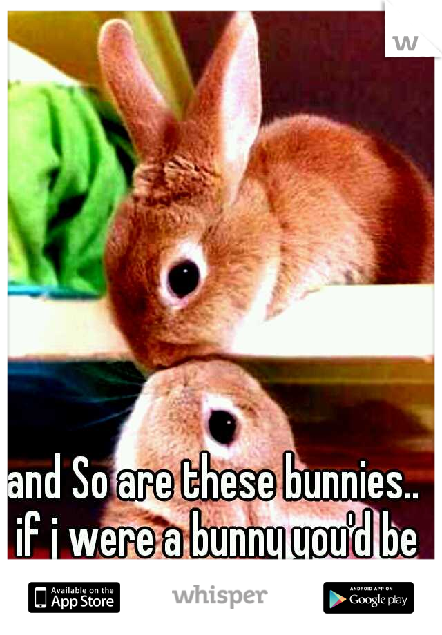 and So are these bunnies.. if j were a bunny you'd be my honey
