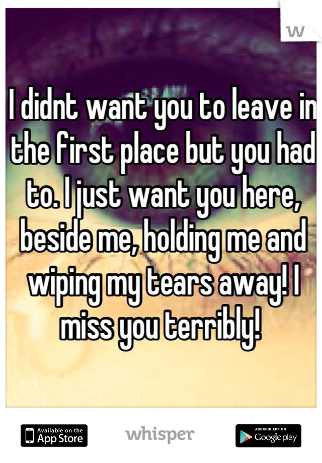I didnt want you to leave in the first place but you had to. I just want you here, beside me, holding me and wiping my tears away! I miss you terribly!