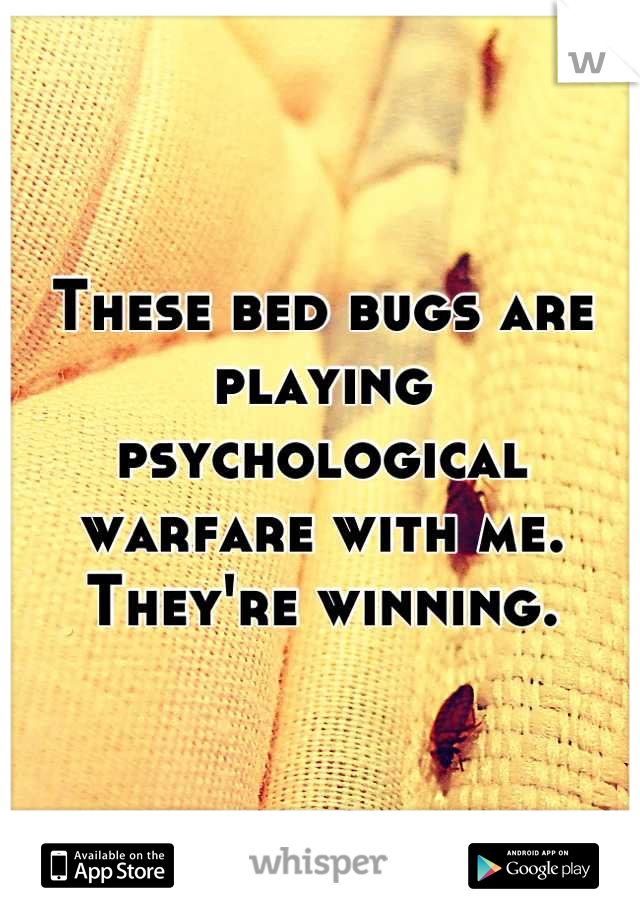These bed bugs are playing psychological warfare with me. They're winning.
