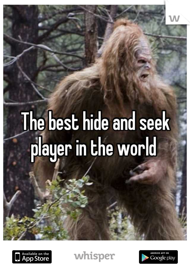 The best hide and seek player in the world