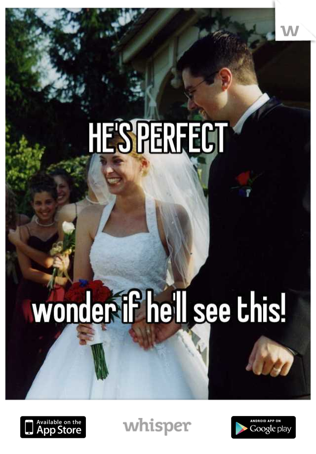 HE'S PERFECT     wonder if he'll see this!