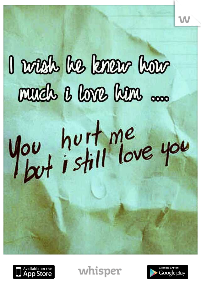 I wish he knew how much i love him ....