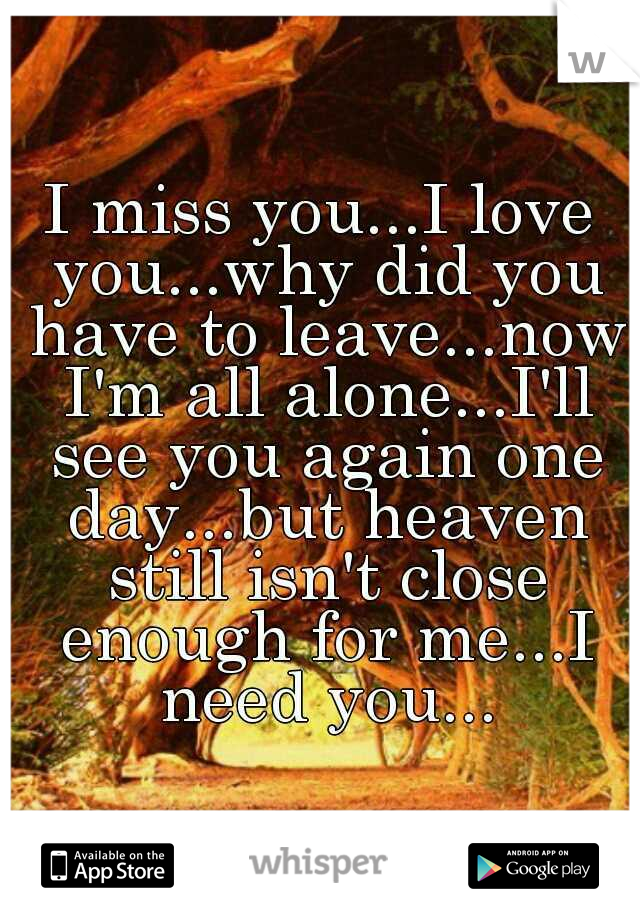 I miss you...I love you...why did you have to leave...now I'm all alone...I'll see you again one day...but heaven still isn't close enough for me...I need you...