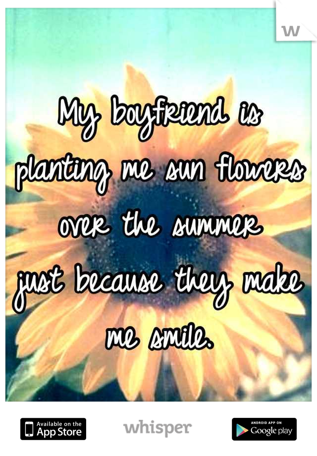 My boyfriend is planting me sun flowers over the summer  just because they make me smile.