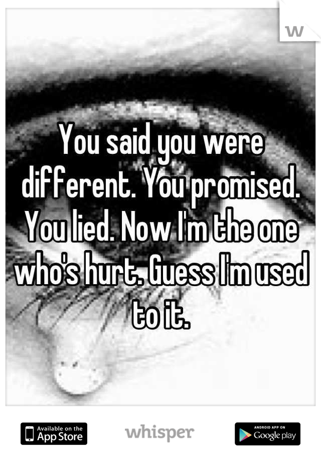 You said you were different. You promised. You lied. Now I'm the one who's hurt. Guess I'm used to it.