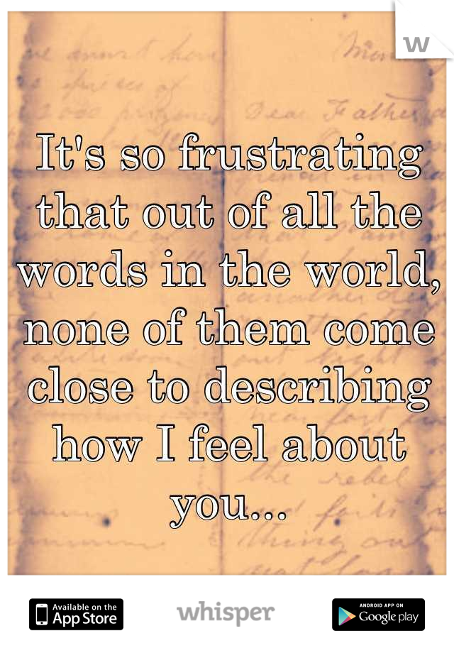It's so frustrating that out of all the words in the world, none of them come close to describing how I feel about you...