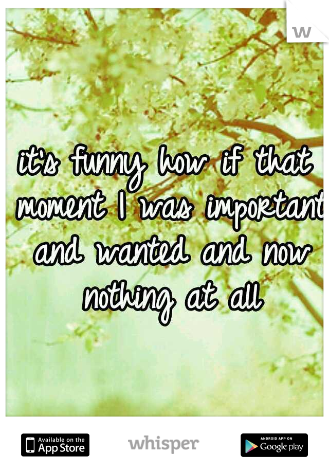 it's funny how if that moment I was important and wanted and now nothing at all