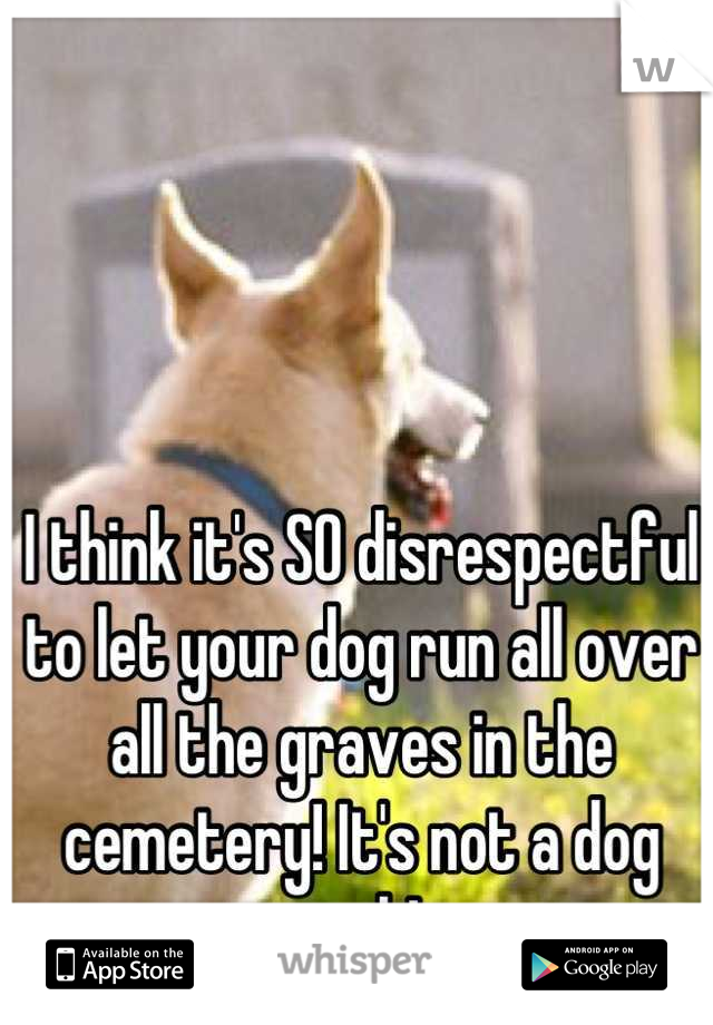 I think it's SO disrespectful to let your dog run all over all the graves in the cemetery! It's not a dog park!