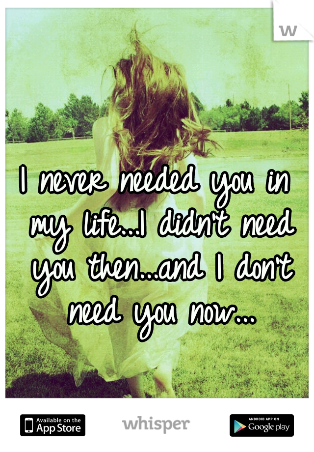 I never needed you in my life...I didn't need you then...and I don't need you now...