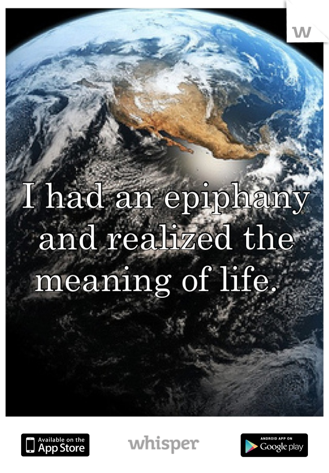 I had an epiphany and realized the meaning of life.