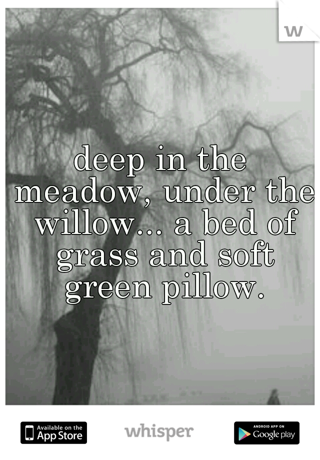 deep in the meadow, under the willow... a bed of grass and soft green pillow.
