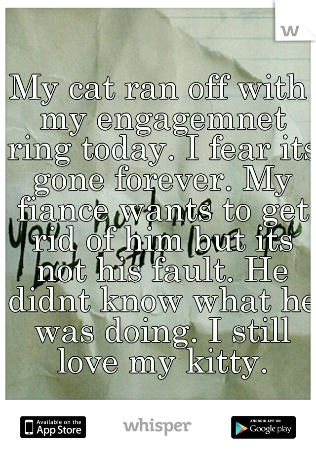 My cat ran off with my engagemnet ring today. I fear its gone forever. My fiance wants to get rid of him but its not his fault. He didnt know what he was doing. I still love my kitty.