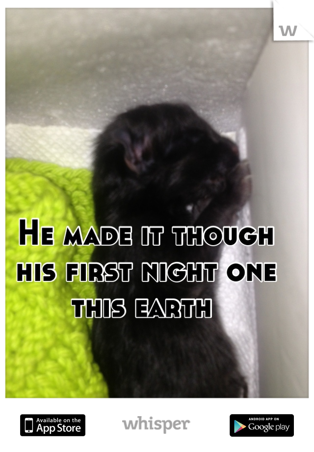 He made it though  his first night one  this earth