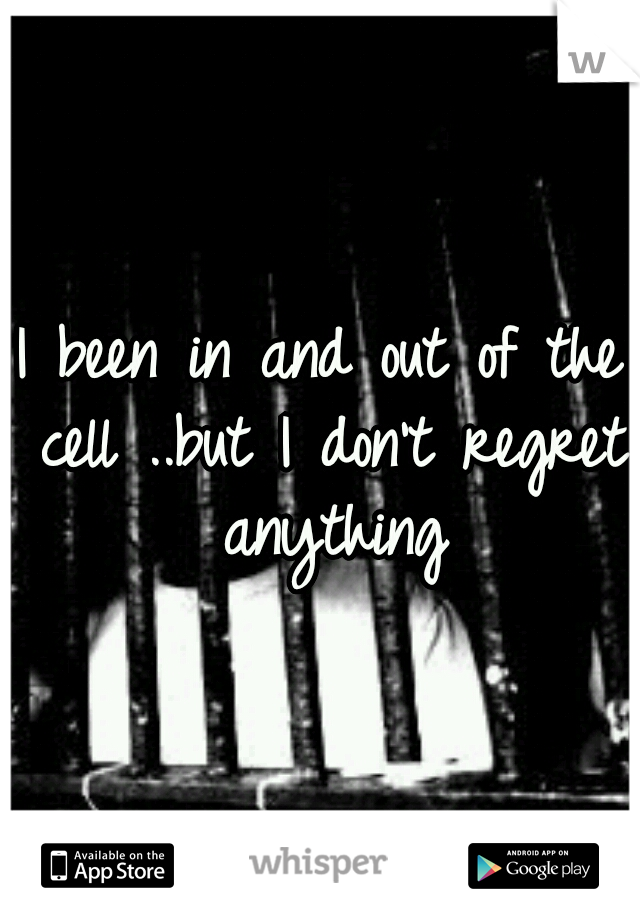 I been in and out of the cell ..but I don't regret anything