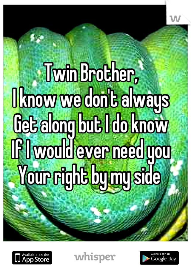 Twin Brother,  I know we don't always  Get along but I do know If I would ever need you Your right by my side