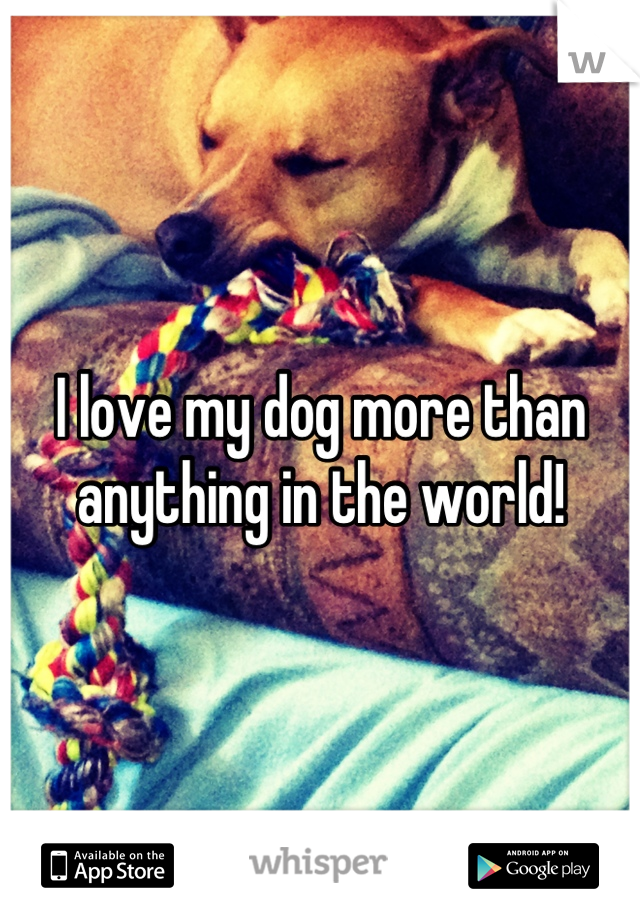 I love my dog more than anything in the world!