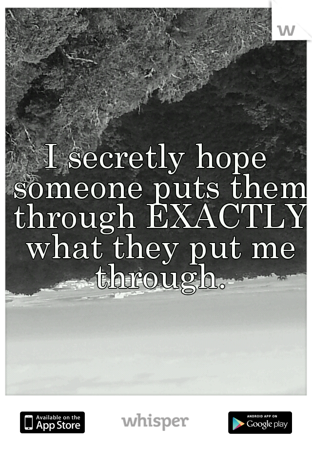 I secretly hope someone puts them through EXACTLY what they put me through.