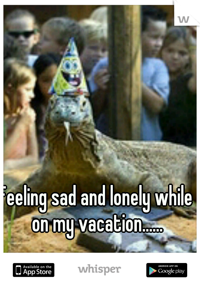 Feeling sad and lonely while on my vacation......