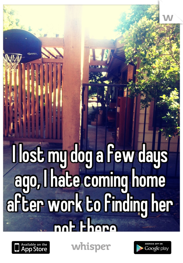I lost my dog a few days ago, I hate coming home after work to finding her not there...