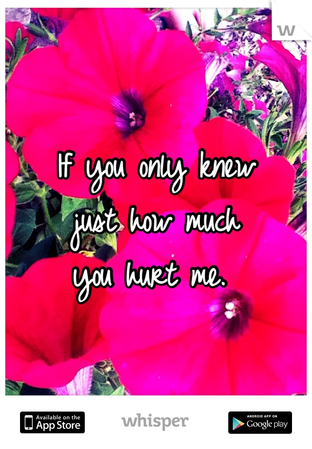 If you only knew just how much you hurt me.