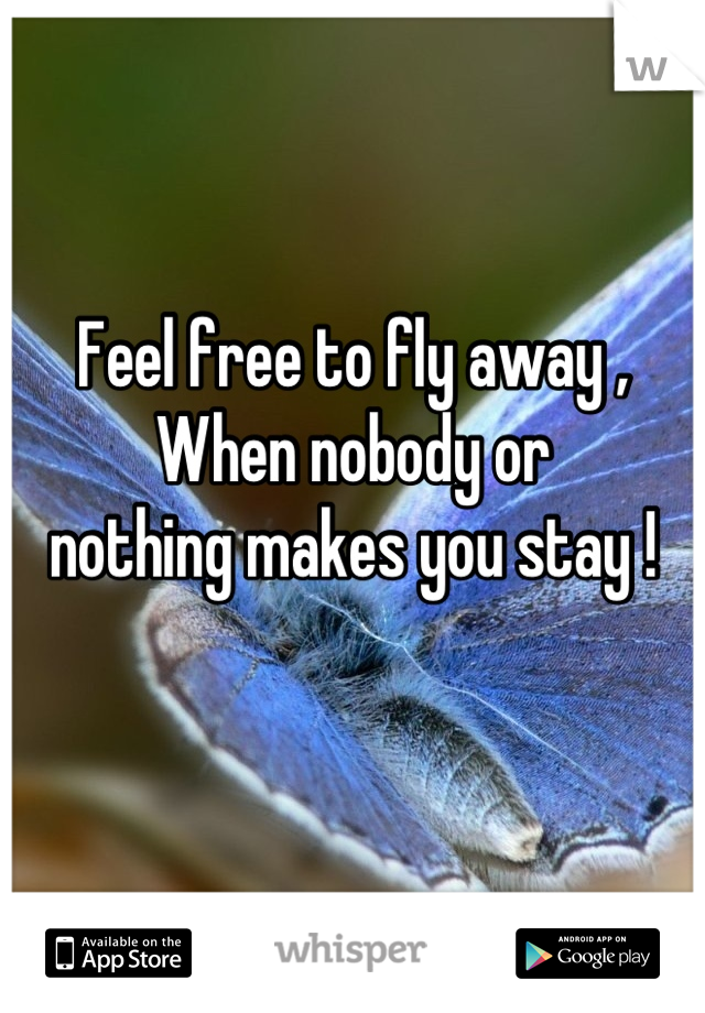 Feel free to fly away , When nobody or  nothing makes you stay !