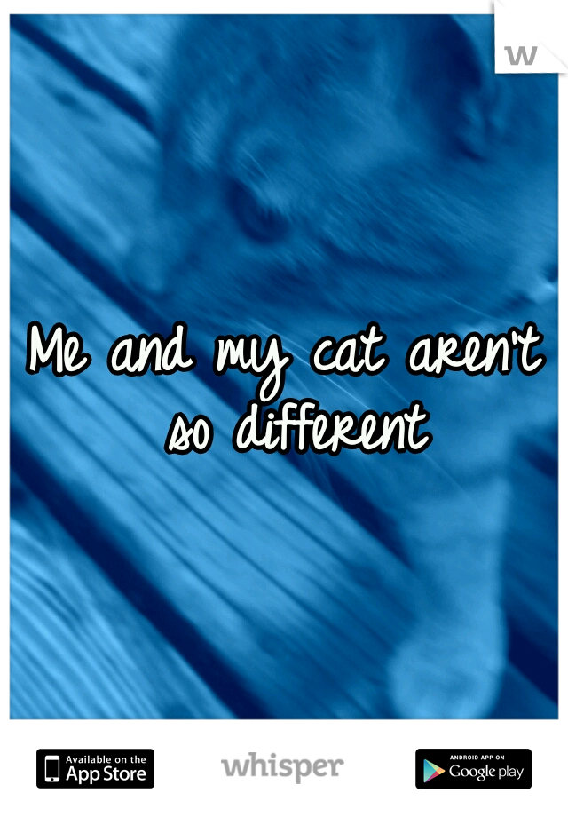 Me and my cat aren't so different
