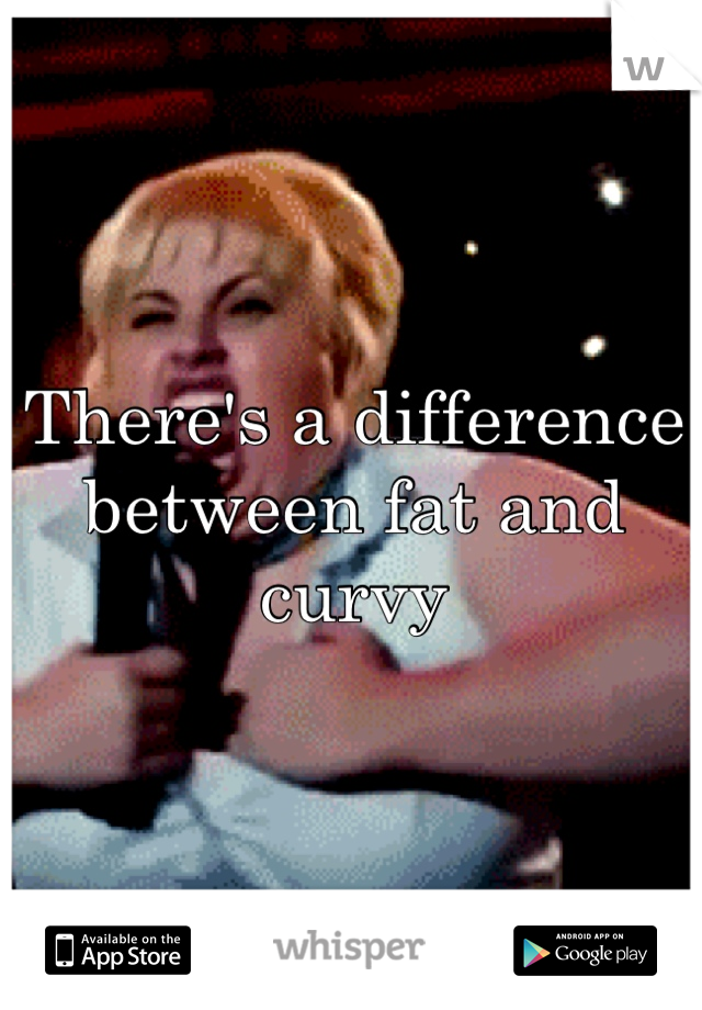 There's a difference between fat and curvy