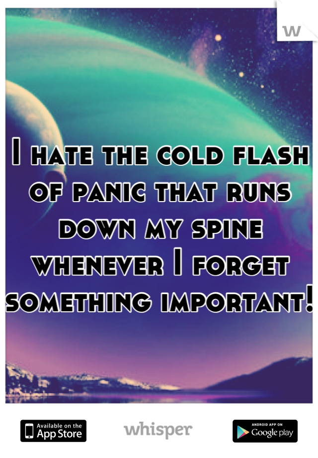 I hate the cold flash of panic that runs down my spine whenever I forget something important!