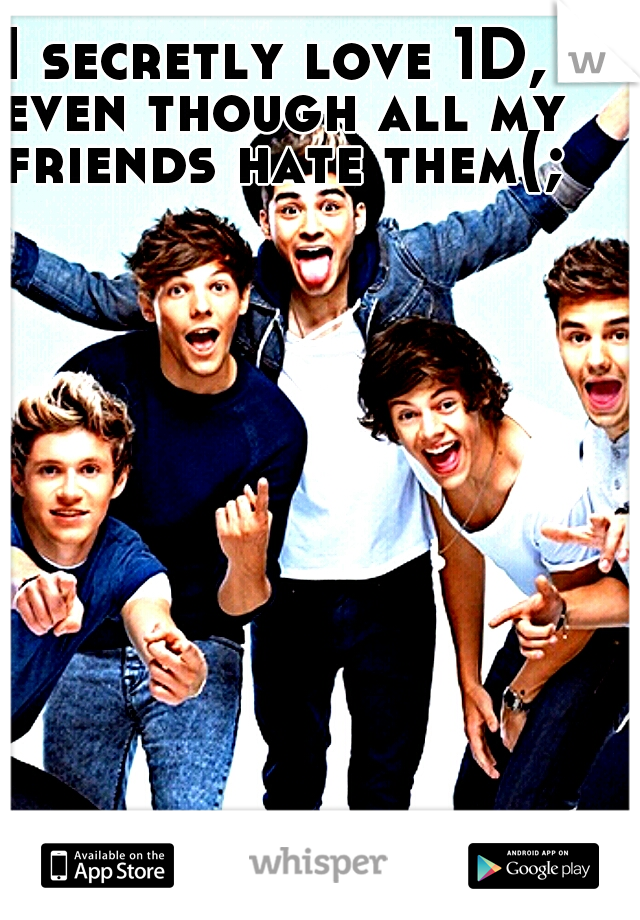 I secretly love 1D, even though all my friends hate them(;