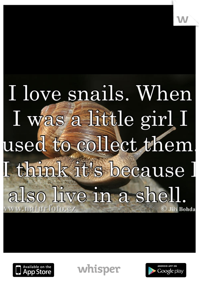 I love snails. When I was a little girl I used to collect them. I think it's because I also live in a shell.