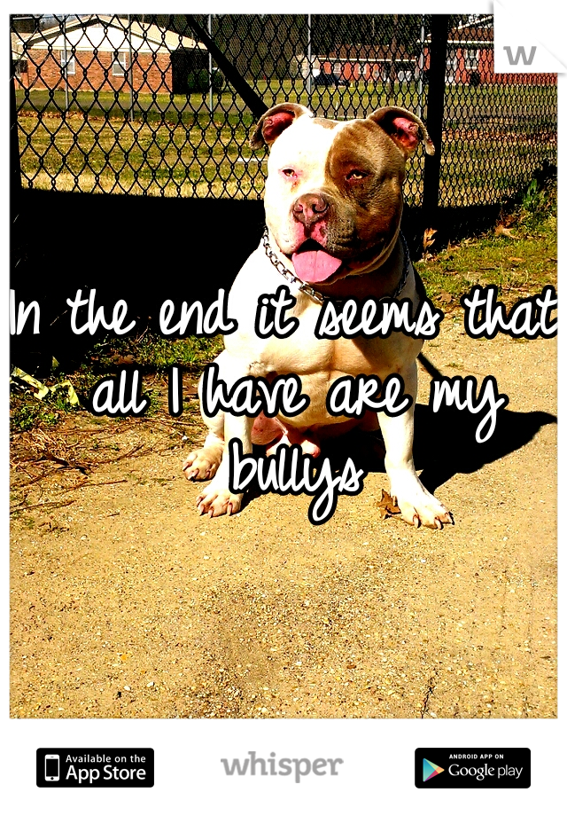 In the end it seems that all I have are my bullys