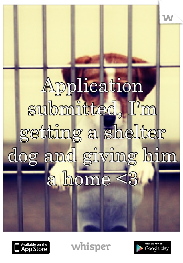 Application submitted, I'm getting a shelter dog and giving him a home <3