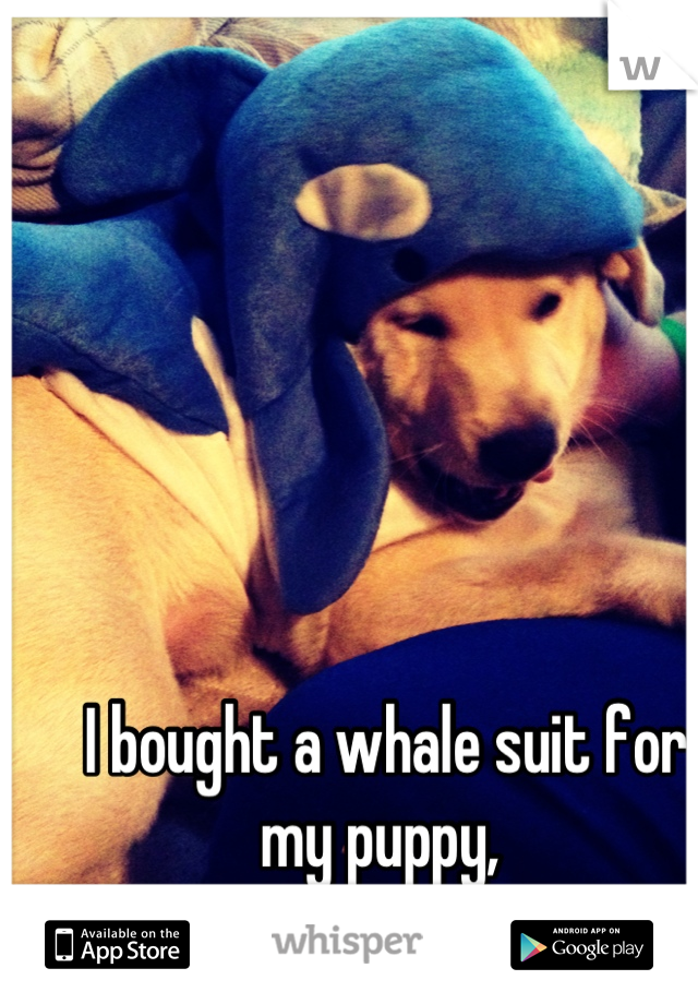 I bought a whale suit for my puppy,