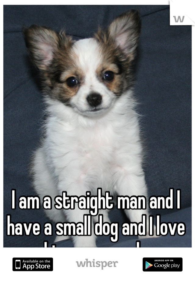 I am a straight man and I have a small dog and I love him very much